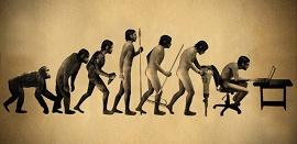 evolução do macaco para o homem