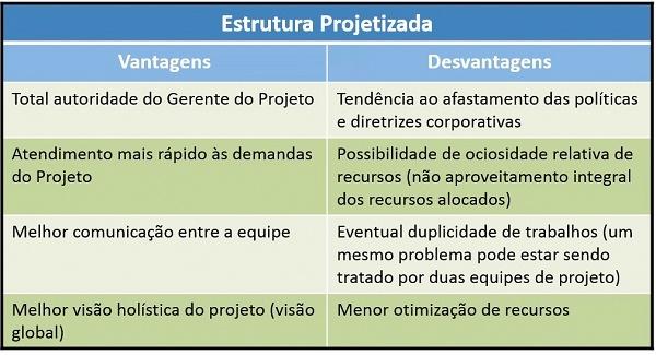 Tabela explicando estrutura projetizada