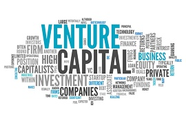 Palavras relacionadas com Venture Capital