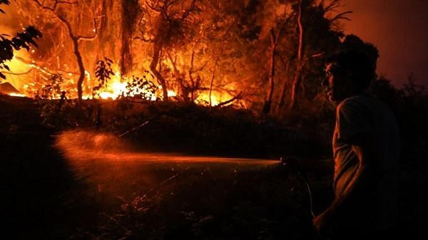 Funcionário da fábrica tentando apagar incêndio florestal